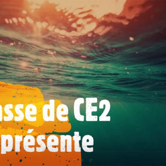 Carnaval 2020 – Theme = développement durable / protection des océans